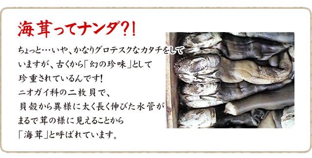 海茸ページ3